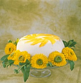 Mango cream cheesecake surrounded by asters