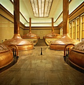Brewing Kettles in Brewery