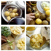 Preparing potato salad