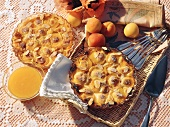 Two apricot tarts