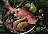 Raw Red Snapper with Shrimp and Clams; Tray