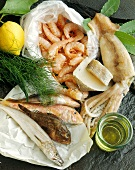 Shrimps; fresh fish; cuttlefish