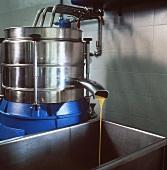 Olive Oil Compression