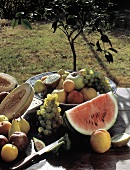 Still Life with Summer Fruits in the Garden