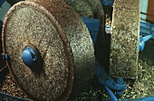 Olive oil production : grinding olives to pulp