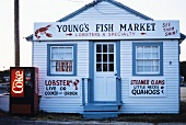 Young's Fish Market; Lobster Restaurant