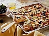 Bunte Gemüsepizza mit Oliven vom Blech