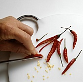 Scraping the seeds out of chili peppers