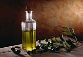 Olive Oil in Bottle; Olives