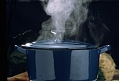 Steaming Blue Stock Pot with Lid