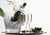Champagne in a Cooler with Orchids; Olives Appetizer