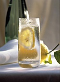 Glass of Sparkling Water with Floating Lemon Slice
