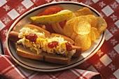 Hot Dog mit Kraut; Sauce & Kartoffelchips