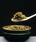 Russian Imperial Caviar