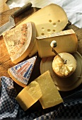 Kinds of Swiss Hard Cheese