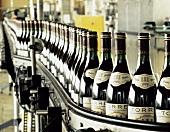Bottle labelling line in the Bodega Torres, Penedes, Spain