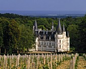 The wine Chateau of Nozet at Pouilly-sur-Loire in France