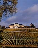 Schloss Johannisberg and the vineyard of the same name in the Rheingau