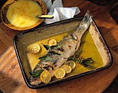 Bass with Lemon Sauce