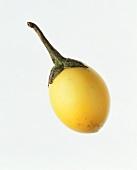 A Yellow Thai Eggplant