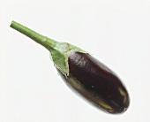 A Single Eggplant