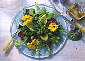 Spring Salad with Nasturtium and mixed Lettuce and Toast