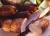 Mehrere Yuccawurzeln (bzw. Maniok, Kassava oder Cassave)