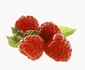 Four Fresh Raspberries with Leaves