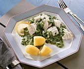 Cod fillet & spinach with cream