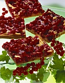 Tray-baked redcurrant cake (yeast dough) with quark topping