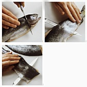 Filleting round fish