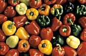 Several Assorted Colorful Bell Peppers