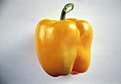 One Yellow Bell Pepper