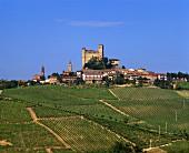 Der Ort Serralunga d'Alba oberhalb der Vigna Ronda im Piemont