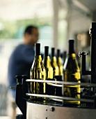 Weinflaschen in Abfüllanlage von Gut Jermann, Collio, Italien