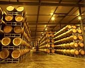 Barrel cellar, Penfolds Wine Estate, Barossa Valley, Australia