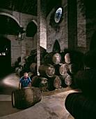 Sherry cask being rolled in Osborne vineyard La Palma, Spain