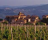 Weingut des Castello di Volpaia vor Radda, Chianti Classico