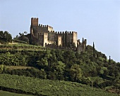 Soave Castle, symbol of Soave white wine in Veneto
