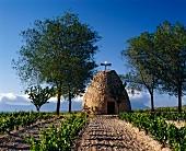 Traditioneller Weinkeller bei Oyon, Rioja-Region in Spanien