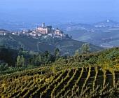 The Barolo village, Castiglione Falletto in Piedmont, Italy