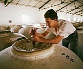 Überwachung der Wein-Fermentation in Alvear, Andalusien