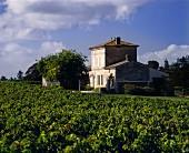 Prachtvoll und klein: Wein-Chateau Lafleur, Pomerol, Bordeaux