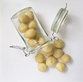 Whole Macadamia Nuts Spilling From a Glass Jar