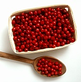 Cranberries in a Basket and in a Wooden Spoon