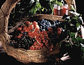 Large Basket Full of Mixed Berries