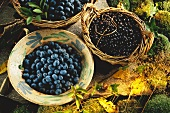 A Bowl of Blueberries and a Basket of Black Currants