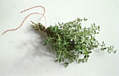 A Bunch of Thyme Tied with Rope