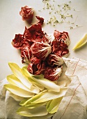 Chicory leaves and radicchio leaves