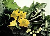 Zucchini with Zucchini Blossoms